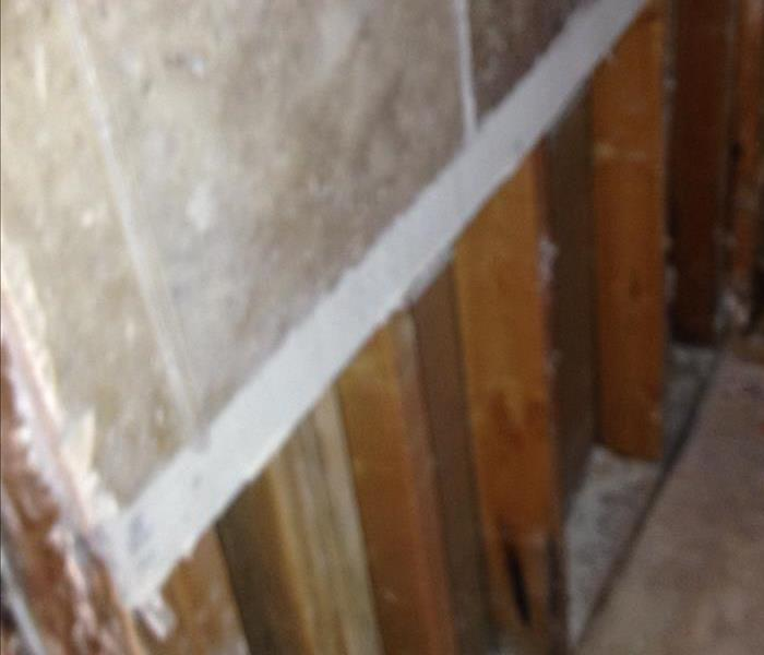 Mold Growth inside Wall