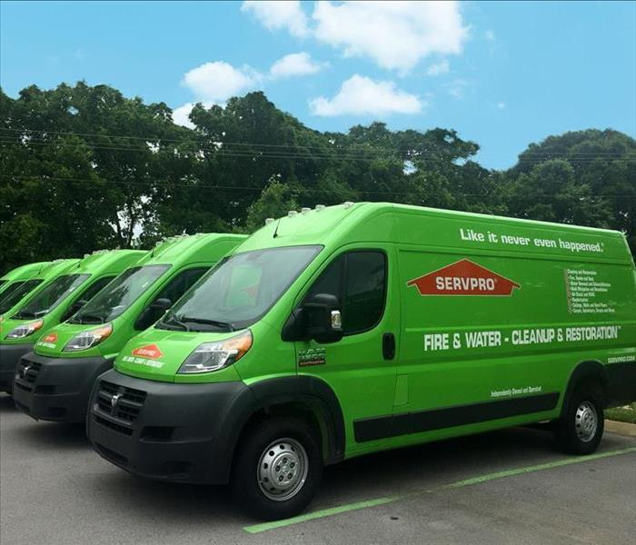 SERVPRO trucks parked in a row