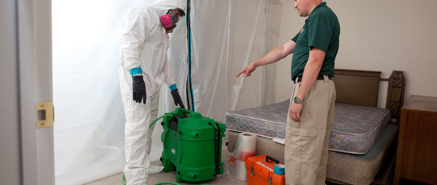 Gulfport, MS mold removal process